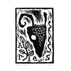 Aries01